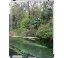 Down Stream, Rock Springs iPad Case/Skin
