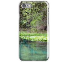 Bank of Beauty, Rock Springs iPhone Case/Skin