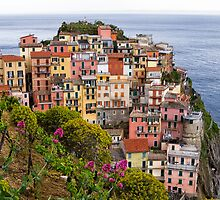 Manarola village and vineyard in Cinque terre area in Italy. by cloud7