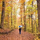 Rainy Autumn Morning in the Ozarks by Bonnie T.  Barry