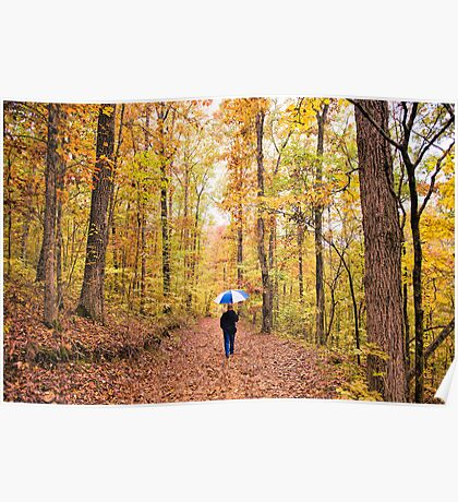 Rainy Autumn Morning in the Ozarks Poster