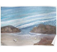 Seagulls on an empty beach. Poster