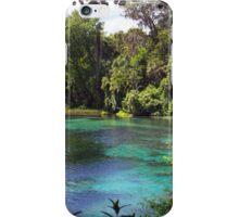 Rainbow Springs iPhone Case/Skin