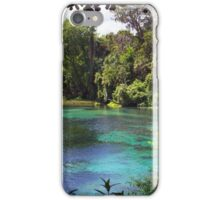 Rainbow Springs iPhone Case/Skin