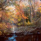 Autumn's Afternoon by John Rivera