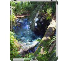 Sand Boil, Rainbow Springs iPad Case/Skin