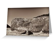 wilsons promontory landscape 9 Greeting Card