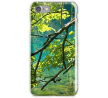 Florida Springs iPhone Case/Skin