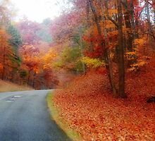 Fall on the Blue Ridge 3 by virginian