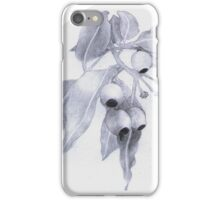 Gum Nuts & Leaves iPhone Case/Skin