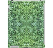 Evergreen - In the Mirror iPad Case/Skin