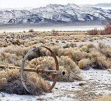 Ranching in the Black Rock Desert by Kathleen Bishop