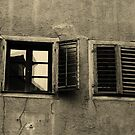 Windows by Paula Bielnicka