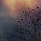 Winter Is Coming - Crows by Caroline Roberti