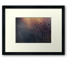 Winter Is Coming - Crows Framed Print