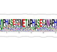 Mitosis Motif Sticker