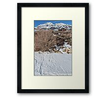 Rabbit Tracks in the Snow Framed Print