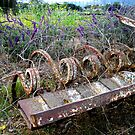 The Beauty of Organic Farm Equipment by waddleudo