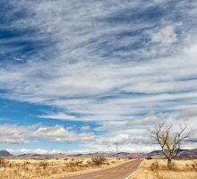 Cloudplay over a Desert Grassland by Kathleen Bishop