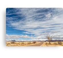 Cloudplay over a Desert Grassland Canvas Print