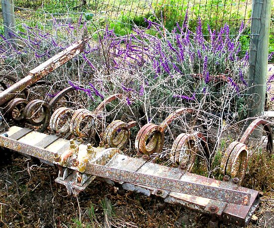 The Beauty of Organic Farm Equipment 4 by waddleudo