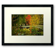 Bow Bridge In Autumn Framed Print