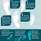 An Infographic on How to Compliment Larger Feet with Long Shoes by Infographics