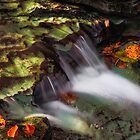 Cascading Autumn Brook by Kenneth Keifer