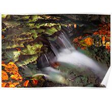 Cascading Autumn Brook Poster