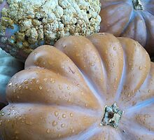 Autumn bounty by Julie Van Tosh Photography