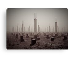 cemetery of the 21st century Canvas Print