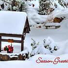 Wishing Well Christmas Card by Diana Graves Photography