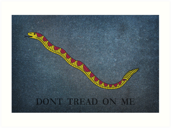 Navy Jack Snake - Dont Tread on Me by Charles McFarlane