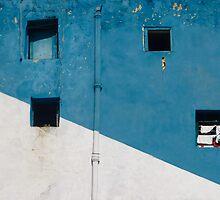 Window of opportunity  by areyarey