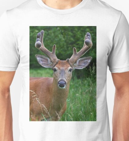 A touch of velvet - White-tailed buck T-Shirt