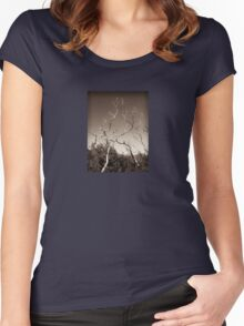 wilsons promontory, trees 1 Women's Fitted Scoop T-Shirt
