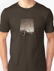 wilsons promontory, trees 1 T-Shirt