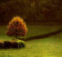 The Autumn tree by Yool