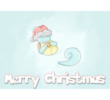 Squirtle Christmas Photographic Print