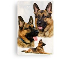 German Shepherd Collage Canvas Print