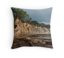 Ross Creek Beach Throw Pillow
