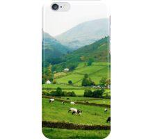 Farms at Grasmere, Cumbria, UK iPhone Case/Skin
