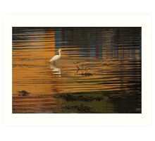 Little Egret Art Print
