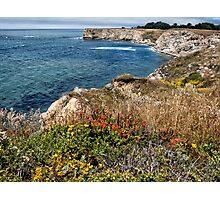 Mendocino Coast in Spring Photographic Print