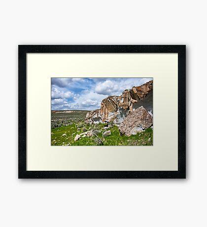 Desert Sentinel Framed Print