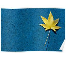 Yellow leaf on blue ground Poster
