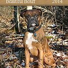 Boxer Calendar Front Page by SpiceTree