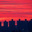 Autumn dusk in New York City  by Alberto  DeJesus