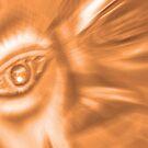 The Eye by cshphotos