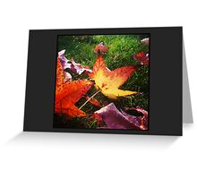 The Wet Flame (6x4) Greeting Card